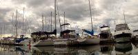 Boats in dock-r.jpg