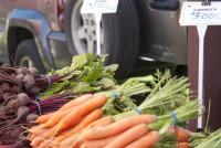 Port Rowans Farmer Market_5.jpg