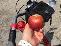 Red-Apple-Rides-4.jpg