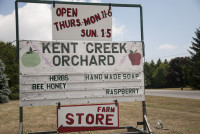 Kent Creek Orchard_13.jpg