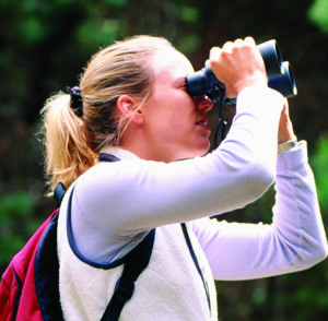 Bird Watching-RDcropped