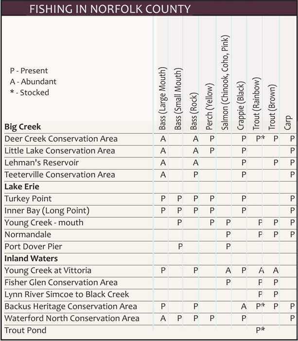 Fish Chart with Available fish varieties specific to areas