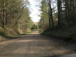 Backroads Route in Norfolk County