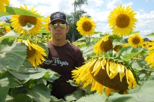 Jason Persall in sunflower field