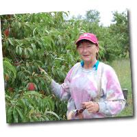 Meet the Farmers: Christine Bauman, Matz Fruit Barn