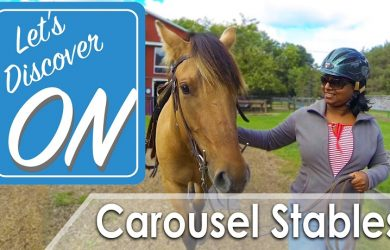 Let's Discover ON Carousel Stables