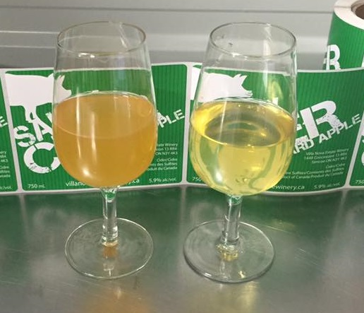 Saucy Ciders