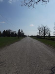 Looking down the middle of a country road on a sunny day.