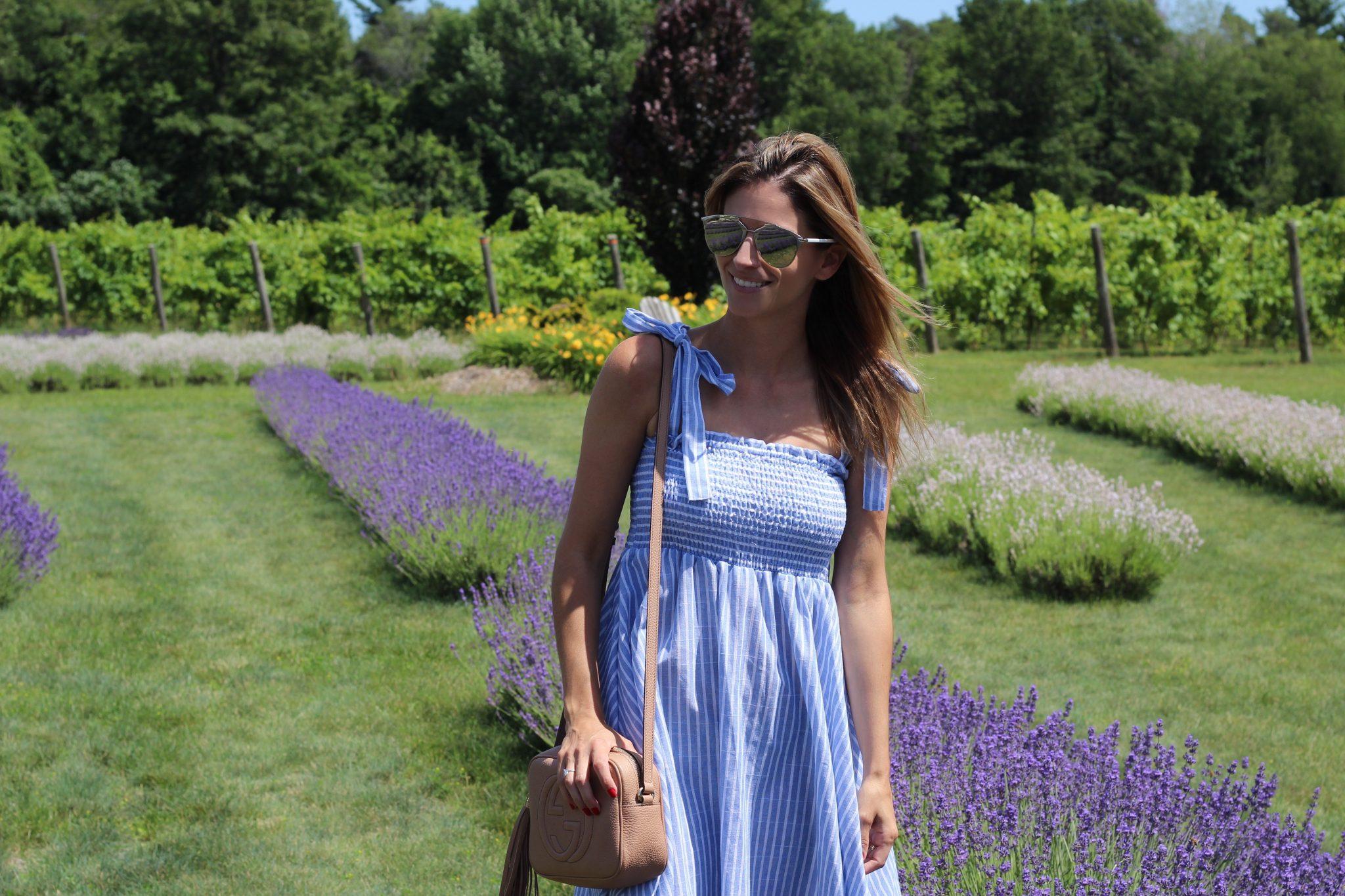 Mandy Furnis blog
