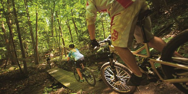 Mountain biking through a forest and over a small bridge