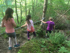 Hiking trail hikers