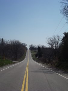 Long open road lined with trees and telephone poles.