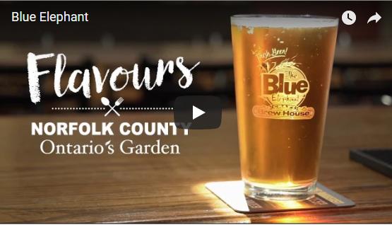 Flavour video Blue Elephant