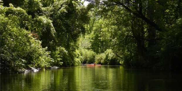 Full lush forest on either sides of a river route with a red canoe in the distance.