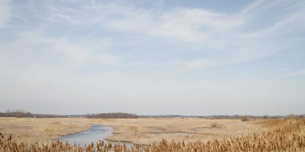 Open marsh land. Dry colour and blue sky with stream.