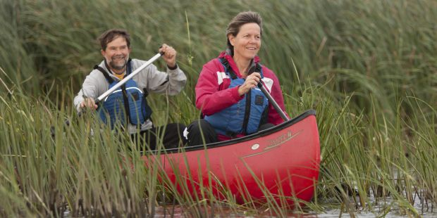 Man and woman in canoe paddling through the mash reeds.
