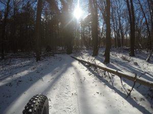 Fat biking on winter trail