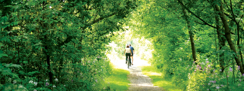 Couple cycling down a tree-lined trail.