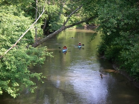 Big Creek Norfolk County kayak