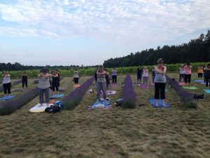Yoga at Bonnieheath Estate Lavender
