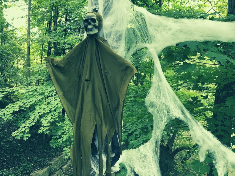Spooky Fun at Long Point Eco Adventures